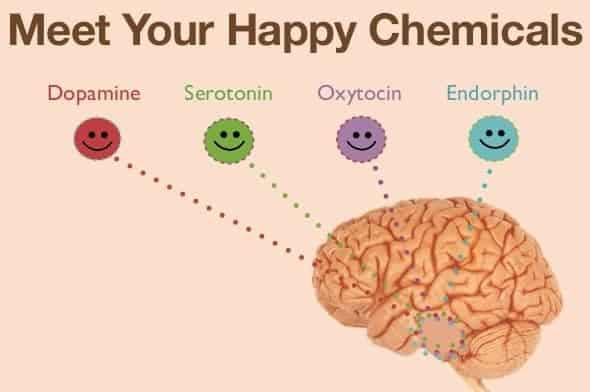 Happy Chemicals